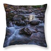 Down River Throw Pillow