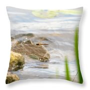 Dragonfly Flying Throw Pillow