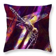 Dragonfly Insect Close  Throw Pillow