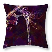 Dragonfly Insect Winged Insect  Throw Pillow