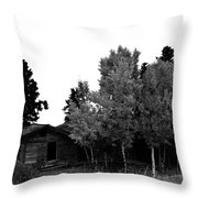 Dreaming In Monochrome Throw Pillow