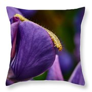 Dreaming Of Wings Throw Pillow