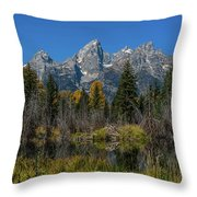 Dressed For Fall Throw Pillow