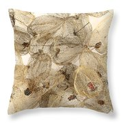 Dried Fruits Of The Cape Gooseberry Throw Pillow