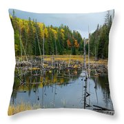 Drowned Trees Throw Pillow