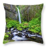 Dry Creek Falls Throw Pillow