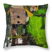 Duck Houses Throw Pillow