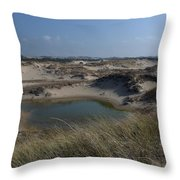 Dune Scape Throw Pillow