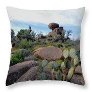 Dusk In The Desert Throw Pillow