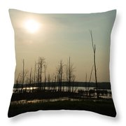 Dusk In The Wetlands Throw Pillow