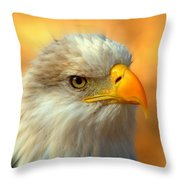 Eagle 10 Throw Pillow by Marty Koch