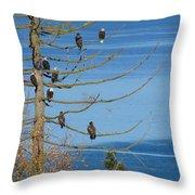 Eagle Tree By The Salish Sea Throw Pillow