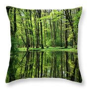 Early In The Spring Throw Pillow