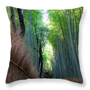 Earth Moments Gallery I Throw Pillow