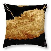 Earwax Particle, Sem Throw Pillow