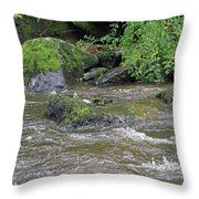East Lyn River  Throw Pillow