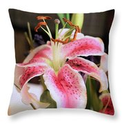 Easter Greetings Throw Pillow