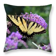 Eastern Tiger Swallowtail Butterfly 2015 Throw Pillow