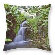 Edale River Throw Pillow