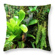 El Yunque National Forest Throw Pillow