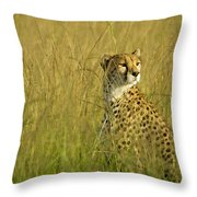 Elegant Cheetah Throw Pillow