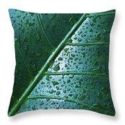 Elephant Ear Leaf Throw Pillow
