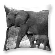 Elephant Walk Black And White  Throw Pillow