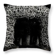 Elk Antlers Gate Jackson Hole Wy Throw Pillow