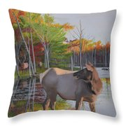 Elk Country Evening Throw Pillow