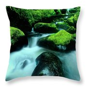 Elowah Falls Columbia River Gorge National Scenic Area Oregon Throw Pillow