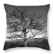 Embrace The Sky Throw Pillow