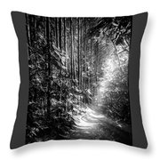 Enchanted Path Throw Pillow