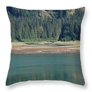 Endicott Glacier Area  Throw Pillow