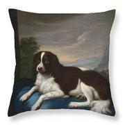 English Springer Spaniel On A Cushion Throw Pillow