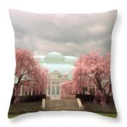 Enid A. Haupt Conservatory Throw Pillow