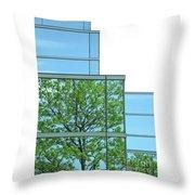 Environment Reflected Throw Pillow