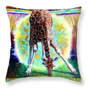 Eternal Nature Of Our Universe - Detail Throw Pillow