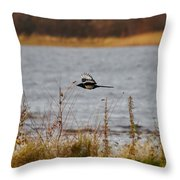Eurasian Magpie Throw Pillow