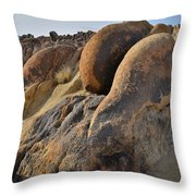 Evening In Alabama Hills Throw Pillow by Ray Mathis
