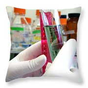 Experiment In Science Research Lab Throw Pillow