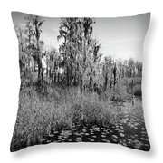 Faces Of The Swamp, No. 7 Throw Pillow