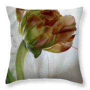 Faded Love Letters6 Throw Pillow
