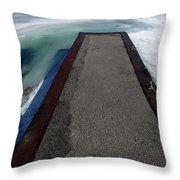 Fading Winter  Throw Pillow