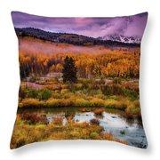 Fall Along Kebler Throw Pillow