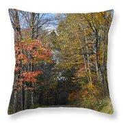 Fall Lane Throw Pillow