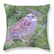 Fall Sparrow Throw Pillow