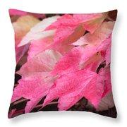 Fall Virginia Creeper Throw Pillow