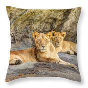 Female Lion And Cub Hdr Throw Pillow