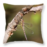 Female Migrant Hawker Throw Pillow