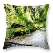 Fern Canyon, Redwood National Park Throw Pillow